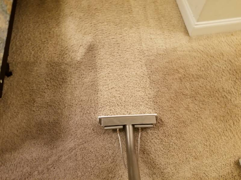 Carpet Cleaning Shaw S Carpet Cleaning